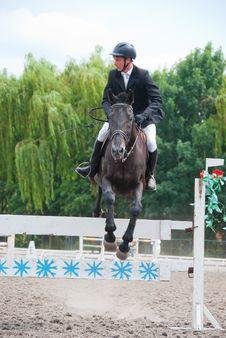 Free Jockey Jumps Over A Hurdle Stock Photo - 16457000