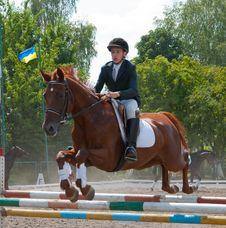 Free Jockey Jumps Over A Hurdle Stock Image - 16457041