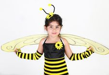 Free Bumble Bee Costume Royalty Free Stock Image - 16457706