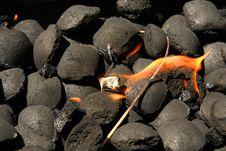 Kindling Of Coals