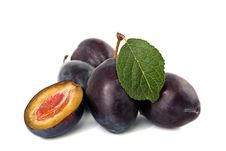 Free Ripe Plums Stock Photos - 16460393