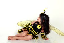 Free Bumble Bee Royalty Free Stock Image - 16460426