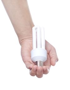 New Bulb Stock Images