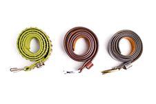 Free Belts Royalty Free Stock Image - 16461376