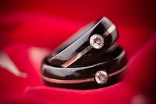 Free Dark Wedding Rings On Red Petals Stock Photo - 16461520