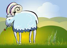 Free Farm Animal Royalty Free Stock Images - 16461589