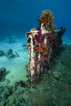 Cargo Of The Yolanda Wreck Stock Photos