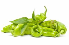 Free Green Peppers Royalty Free Stock Photography - 16461837