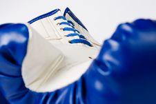 Free Boxing Glove On White Stock Photo - 16464670