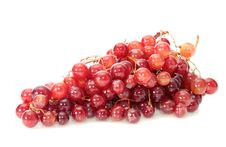 Free Grapes, Isolated. Royalty Free Stock Photos - 16465038