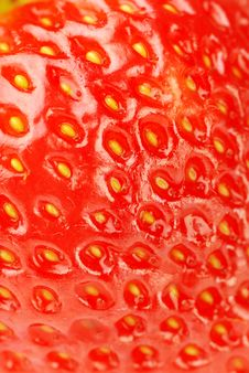 Free Fresh Strawberry Royalty Free Stock Photo - 16465695