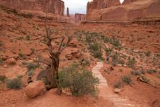 Free Park Avenue In Arches Royalty Free Stock Photo - 16468965