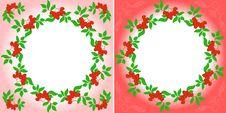 Rowanberry Wreaths Royalty Free Stock Photos