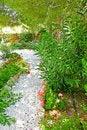 Free Garden Stock Image - 16471361