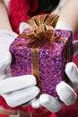 Free Christmas Girl Royalty Free Stock Photos - 16477348