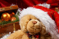 Free Image Of A Teddy Bear In A Christmas Hat Royalty Free Stock Photos - 16479938