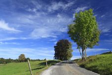 Free Road In A Meadow Royalty Free Stock Images - 16472069