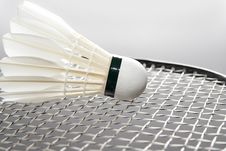 Free White Shuttlecock On The Racket Royalty Free Stock Image - 16472656