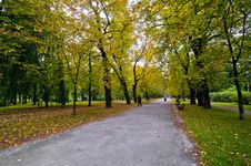 Park In The City During Autumn Stock Image