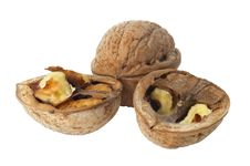 Free Walnuts Royalty Free Stock Image - 16474486
