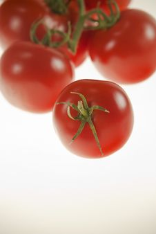 Free Tomatos One In Front Of Others Stock Images - 16475034