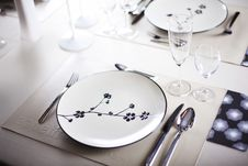 Free A Dinner Plate Royalty Free Stock Image - 16475106