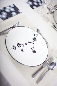 Free A Dinner Plate Royalty Free Stock Photos - 16475178