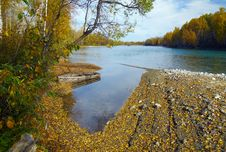 Free Autumn River Scenics With Boat Royalty Free Stock Images - 16475249