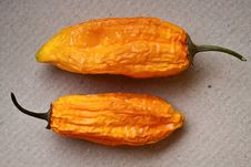 Free Two Hot Orange Peppers Royalty Free Stock Photo - 16475825