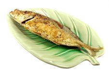Free Fried Fish Stock Image - 16476441