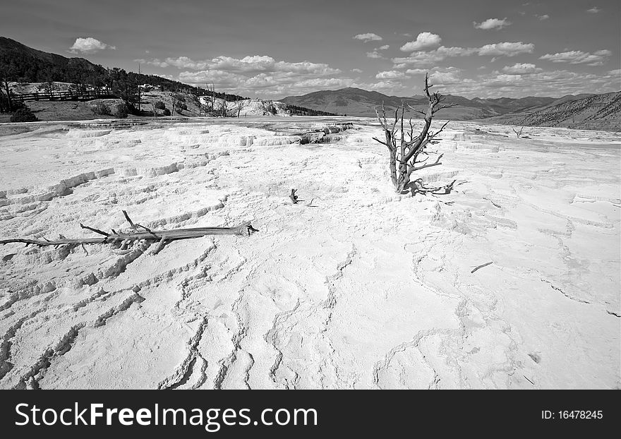 Landscapes of yellow stone national park