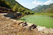 Skadar Lake, Montenegro Stock Images