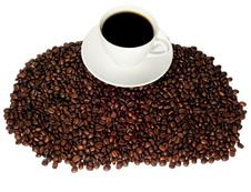 Free Cup Of Coffee On Coffee Beans Royalty Free Stock Image - 16480446