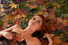 Free Portrait Of A Young Woman On An Autumn Background Royalty Free Stock Image - 16480556