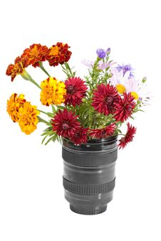 Free Bouquet Of Flowers In The Lens Royalty Free Stock Photos - 16481718