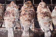 Free Grilled Fish. Royalty Free Stock Photos - 16481818