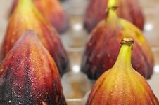 Free Fruit - Fresh Figs Stock Photography - 16482232