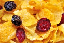 Free Healthy Cereal With Raisins And Berries Royalty Free Stock Photography - 16482377