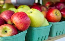 Free Apples On A Shelf Royalty Free Stock Photos - 16483078