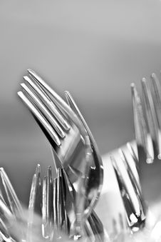 Free Forks Stock Images - 16483394