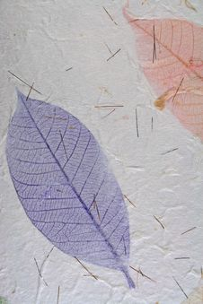 Paper With Leaves Stock Photos