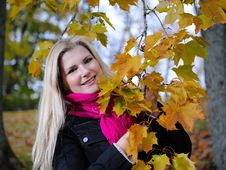 Free Beautiful Autumn Woman Near Yellow Tree Stock Image - 16489771