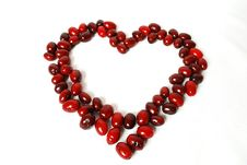 Heart Is Lined With Dogwood Berries Stock Image