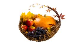 Free Autumn S Basket Stock Photography - 16489902