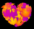 Free Abstract Heart With Autumnal Leaves Royalty Free Stock Photos - 16494508