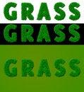 Free 3 Grass Royalty Free Stock Image - 16497426