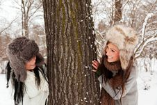 Free Snow Friends Royalty Free Stock Photography - 16490447
