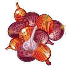 Free Onion And Garlic Stock Photo - 16491700
