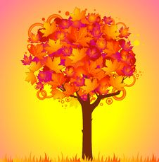 Free Background With Autumnal Tree With Leaves. Stock Images - 16494504