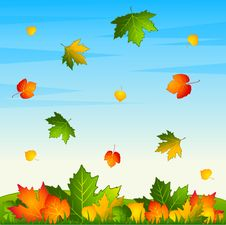 Free Background With Autumnal Leaves. Royalty Free Stock Photo - 16494505